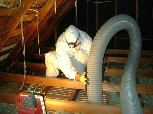 insulation-removal-attic-doctors-orange-county