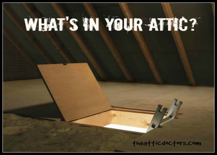 What S In Your Attic The Attic Doctors