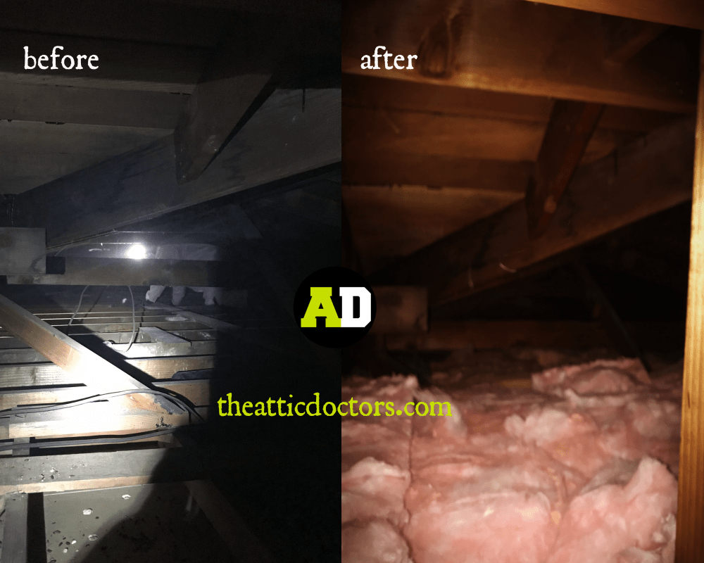 Attic Insulation Removal Total Attic Cleaning The Attic